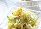 シャキシャキ食感&あっさり味♪白菜サラダ