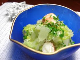 白菜たっぷりのさわやかサラダ