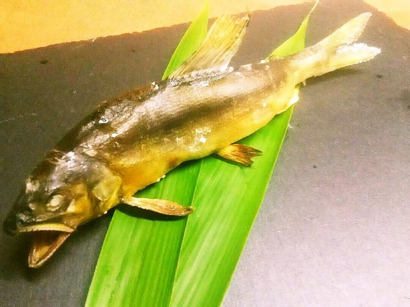 魚グリルで簡単!料亭みたいな鮎の塩焼き♪