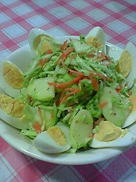キャベツとりんご■甘酸っぱいサラダ
