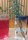 赤紫蘇ジュース(→残り葉は紫蘇味噌へ)