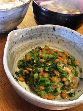 混ぜておいしい大根の葉と納豆