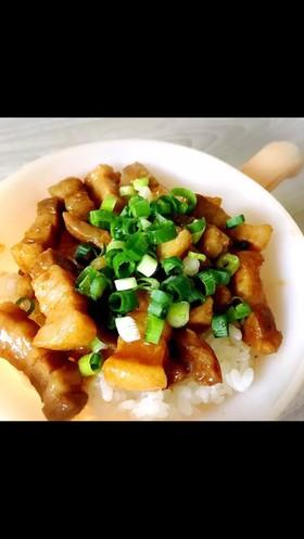 ごはんがすすむ☆簡単!ルーロー飯!魯肉飯