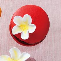 花飾りのマカロン