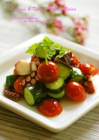蛸ときゅうりとトマトのイタリアンサラダ
