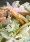 ゴーヤと魚肉ハンバーグのマヨカレー炒め