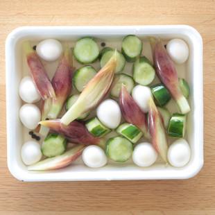 きゅうりとみょうが、うずらの卵のピクルス