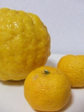 ビックリ鬼柚子☆ママの味