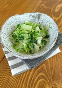 白菜とねぎの塩炒め