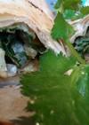 天ぷらバリトス