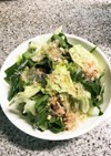 レタスとサラダほうれん草のサラダ