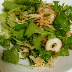 パクチーと切り干し大根のサラダ
