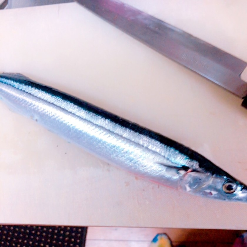 簡単!秋刀魚の下処理