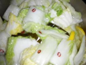 何ちゃって浅漬けの素で漬けた白菜