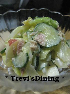 ツナ缶でキャベツときゅうりのサラダ