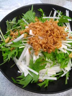 オニオンがきめて☆大根と水菜のサラダ