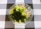 サラダにちょこっとワカメ(*^^)v