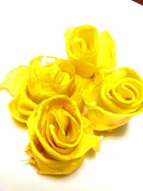 ✿黄色いバラ✿