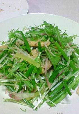 水菜と和野菜のサラダ☆