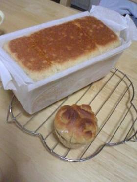 素朴なデイリー食パン