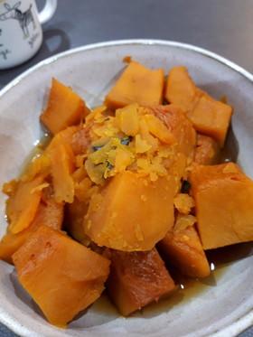 かぼちゃ 黄金 比