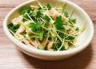 サラダチキンで簡単おつまみサラダ