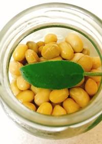 ハーブで作る匂いの少ない簡単手作り納豆