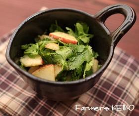 【農家のレシピ】パクチーとりんごのサラダ