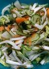 白菜が美味しい♪もりもり野菜の昆布締め
