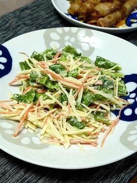 簡単!大根とほうれん草の鉄骨サラダ