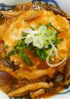 鶏挽き肉で❀和風おろしの煮込みハンバーグ