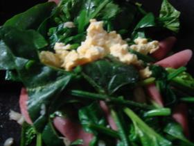 HOTサラダ(にんにくバター風味)