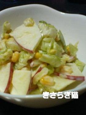キャベツとりんごのあま~い♡サラダ