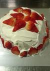 クリスマスホワイトドームケーキ