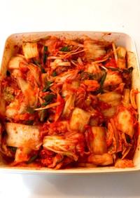 ジッパー袋を使って手作り白菜のキムチ覚書