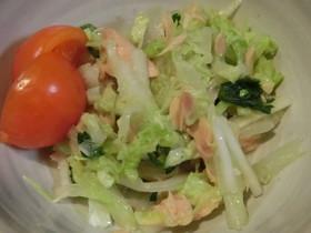 白菜と春菊のツナミクスサラダ