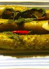 ロシヤの胡瓜の漬物 ヨーグルトメーカー