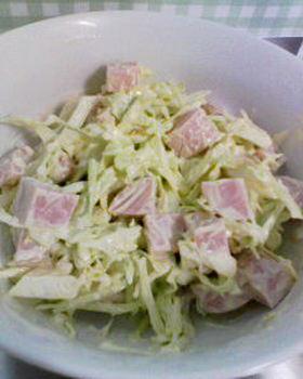 簡単!キャベギョニソーサラダ