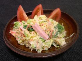 魚肉ソーセージ in 定番野菜サラダ