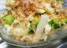 きゅうりと山芋の和風サラダ
