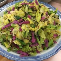 日野菜サラダ2018年版