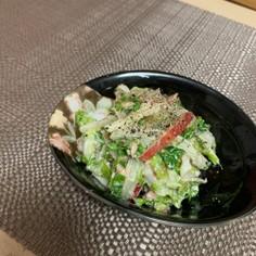 白菜とりんごのサラダ☆