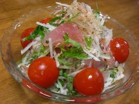 大葉と茗荷で、香る♪お刺身サラダ