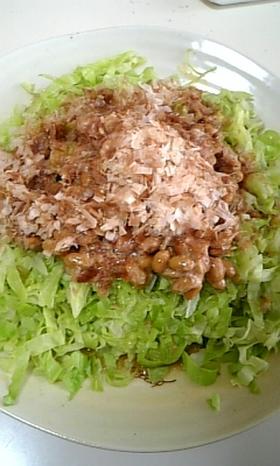 5分でできる!キャベツの納豆サラダ