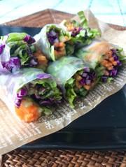 もろみで食べる生春巻きサラダの写真