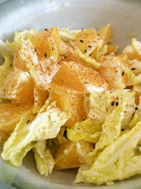 +1品 白菜と八朔のマヨ七味サラダ