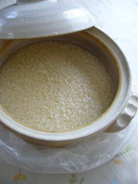 米麹の甘酒(電気ソフトあんか):レオン亭