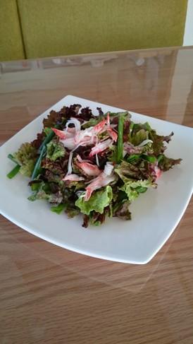 カニかまで簡単美味しいサラダ