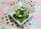 小松菜と豆腐の塩麹和え