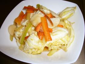 野菜のサラダ漬け